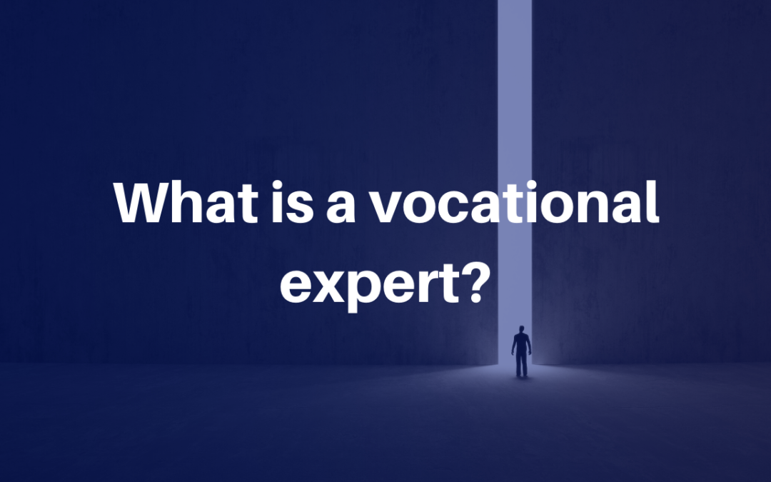 What is a vocational expert?